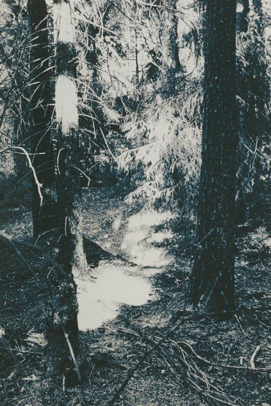 Open plaats 1 1998 print mdf 37,5 x 25 2,8 cm - Kunsthuis Kort, Workum