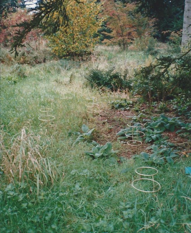 Lucciole 1993 messing 5 X 26 x 45 cm Hortus, Haren