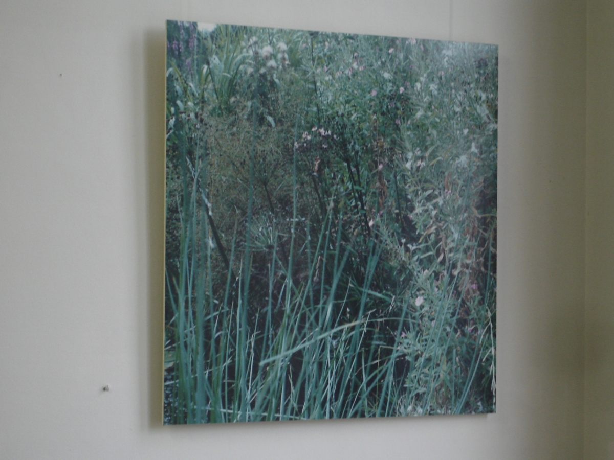 1 M2 Oude A 1997 color print 100 x 100 cm - VUH Haarlem 2010